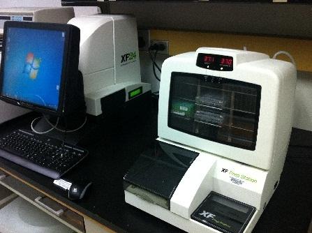 Seahorse XF24 Extracellular Flux Analyzer