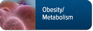 Metabolism and Obesity