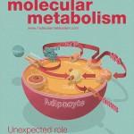 Molecular Metabolism Vol 4 No 9