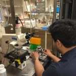MSTP student in the lab