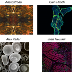 The UVa Bioscience Scientific Photo Competition is Back! The deadline for submission is Friday, April 14th!
