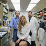 Kudos to the Kipnis Lab: New Findings to Treat Multiple Sclerosis